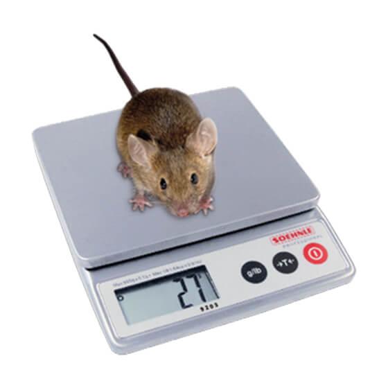 Imagem da balança veterinária digital 9202-9203